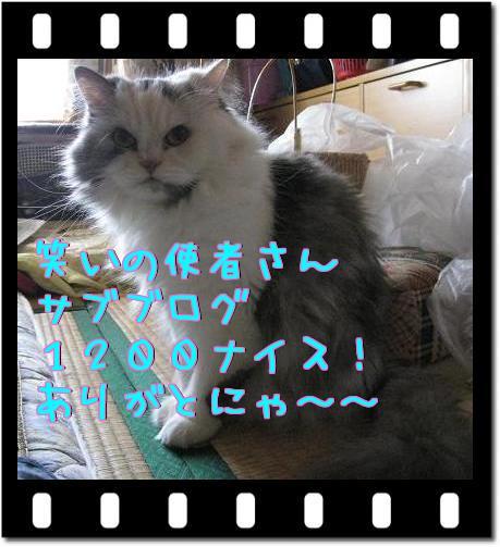 1E49NY__.jpg