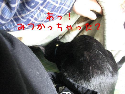 P_zjF8G9.jpg