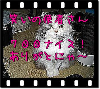 m0X_1IfR.jpg