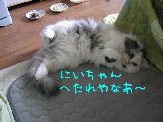 35A7biQ1.jpg