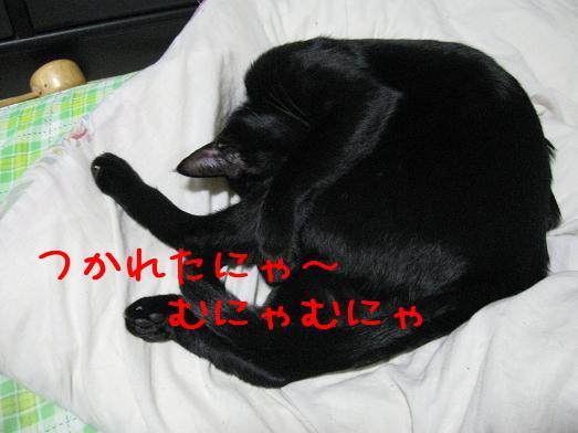 XjEomBtF.jpg