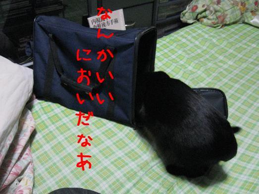 izdD8v_7.jpg
